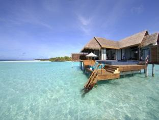 anantara kihavah villas maldives resort - over water pool villa