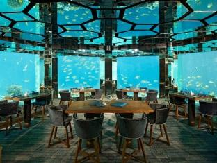 anantara kihavah villas maldives resort - sea underwater restaurant