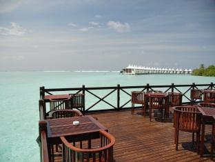 chaaya lagoon hakuraahuraa resort maldives - restaurant