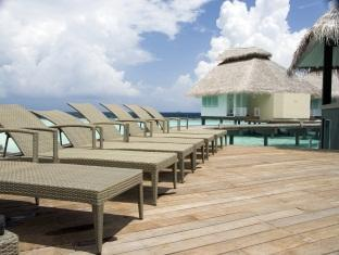 chaaya reef ellaidhoo resort maldives - swimming pool