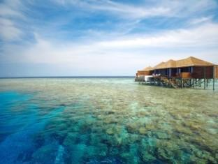 lily beach resort maldives - surroundings