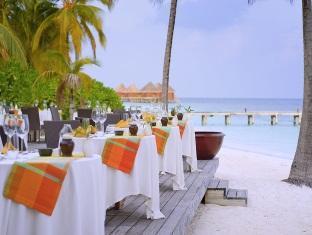 mirihi island resort maldives - restaurant
