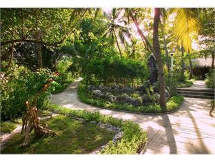 velidhu island resort maldives - garden