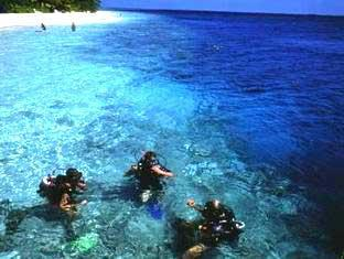 vilamendhoo island resort maldives - diving