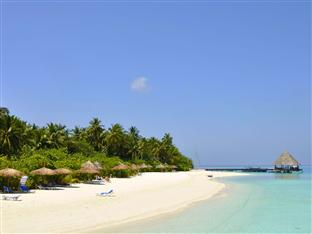 vilu reef beach spa resort maldives - beach