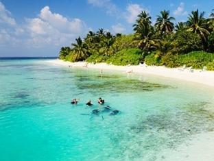 bandos island resort maldives - diving