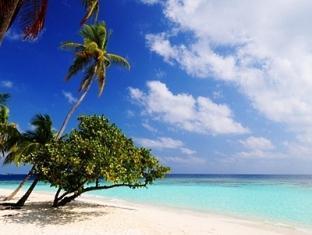 bandos island resort maldivess - the beach