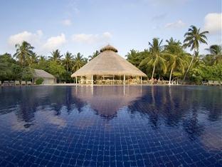 chaaya reef ellaidhoo resort maldives - swimming pool