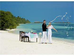 diva resort spa resort maldives - celebrate