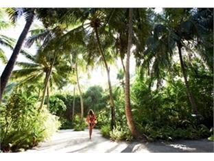 diva resort spa resort maldives - view