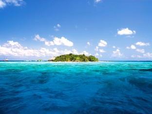 eriyadu island resort maldives - island view