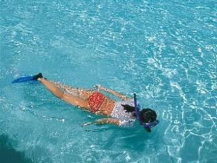 holiday island resort maldives - diving