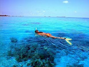 komandoo island resort maldives - snorkeling
