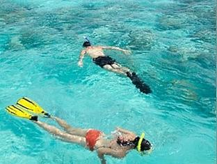 shangrilas villingili resort maldives - under water trail