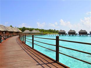 vilu reef beach spa resort maldives - villa path way